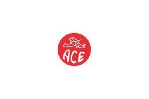 ACE Hardware Logo 1929