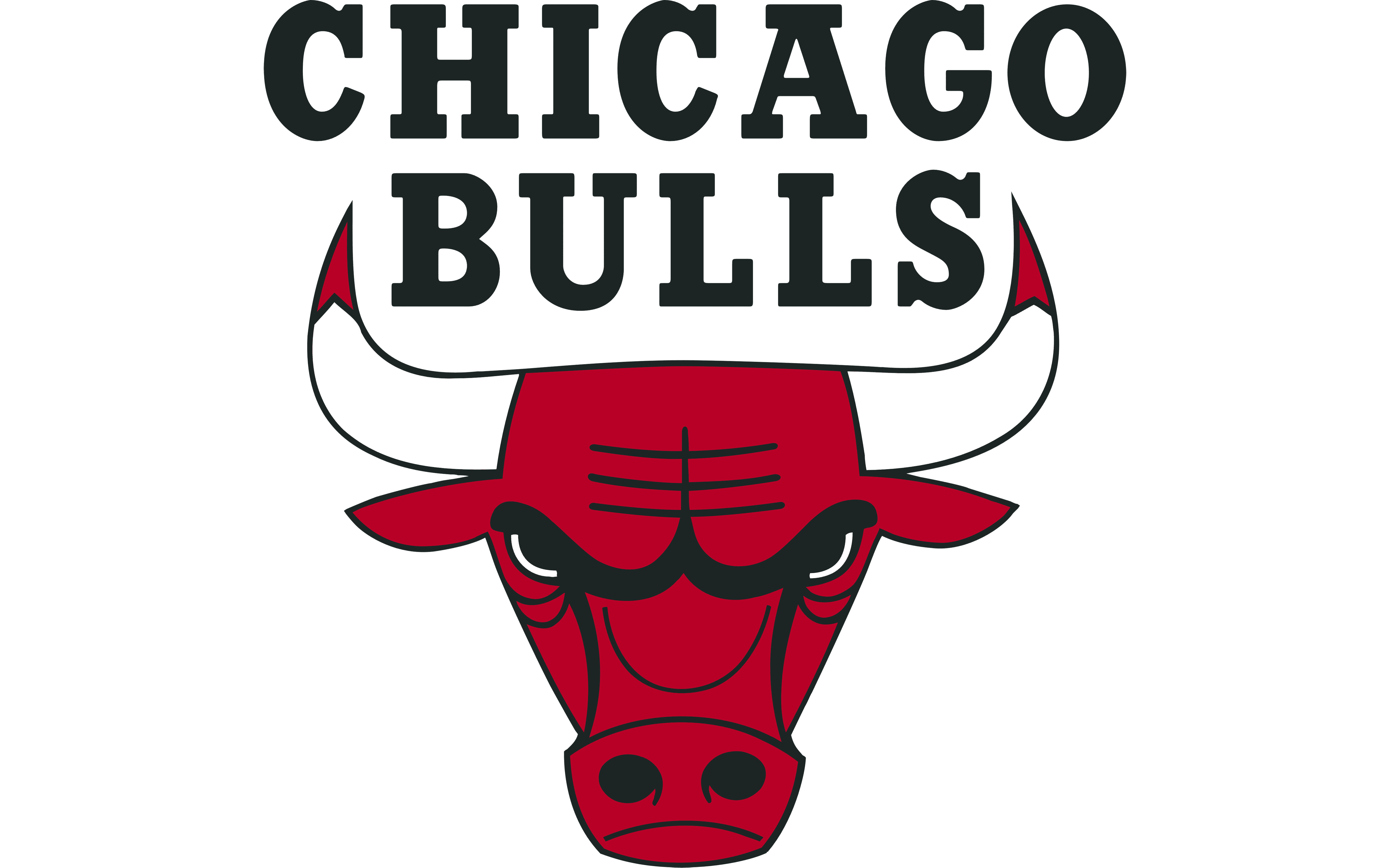 Image result for chicago bulls logo