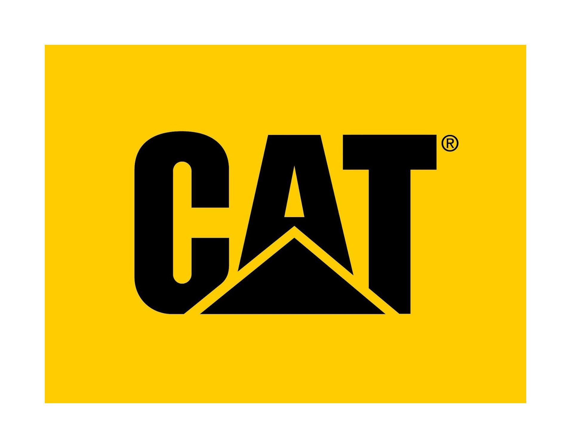 Cat Power Net
