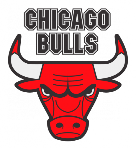 shape chicago bulls