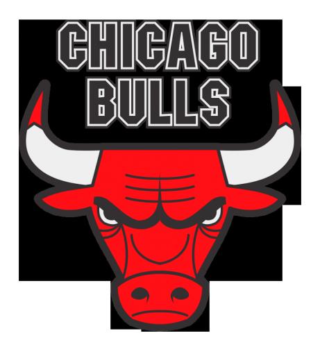 shape chicago bulls