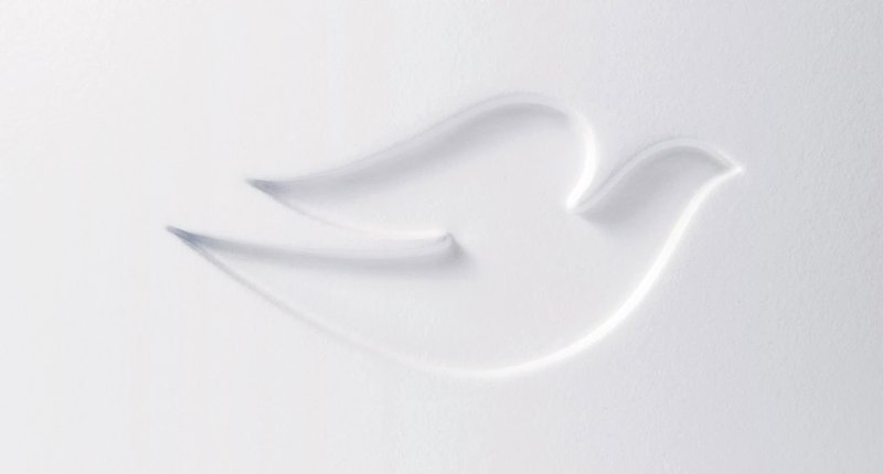 Meaning Dove Logo And Symbol History And Evolution