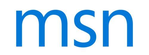 Font MSN Logo