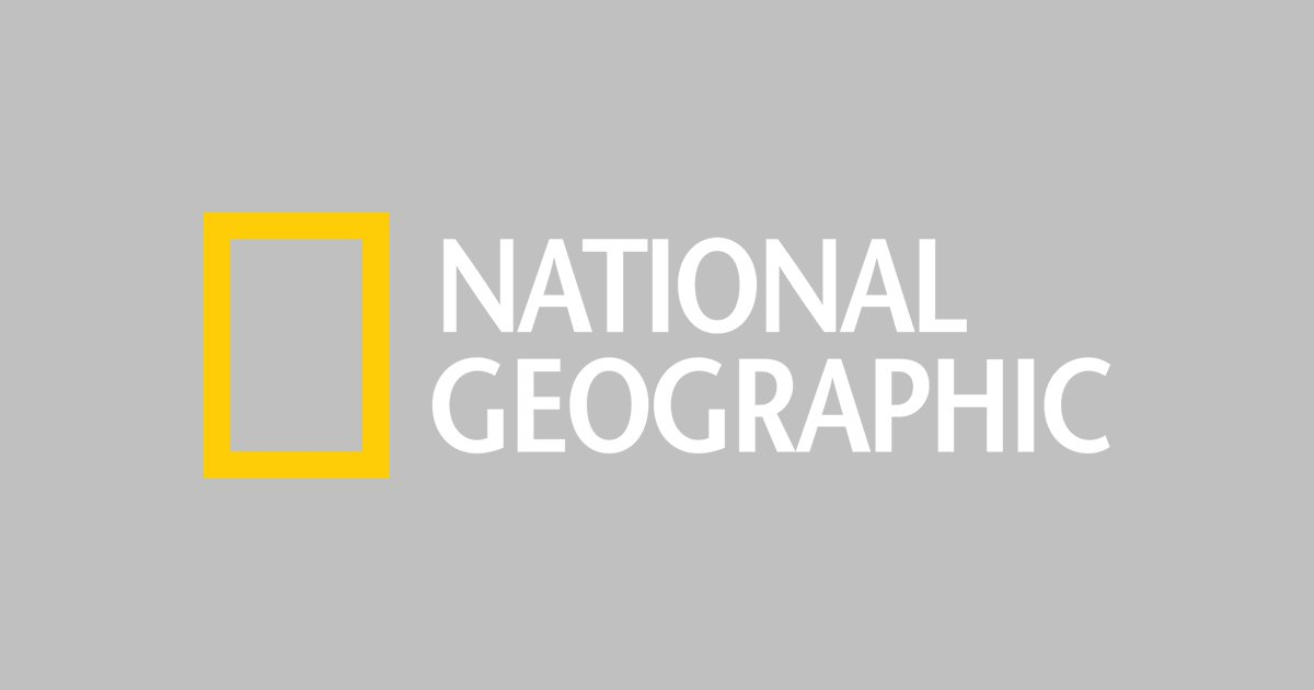 national geographic logo, national geographic symbol, meaning