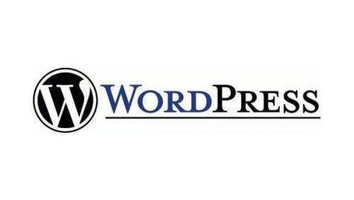 WordPress Logo 2003