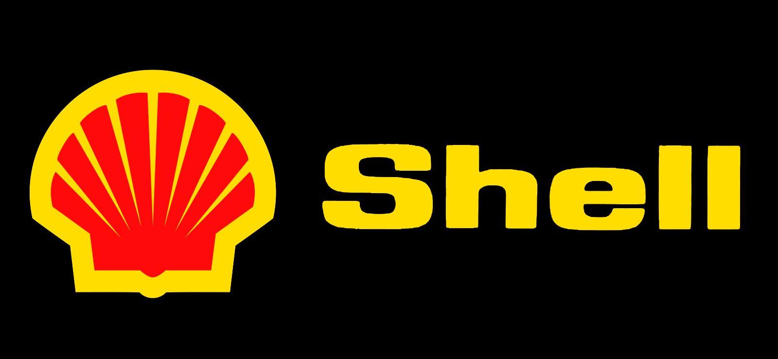 shell logo  shell symbol  meaning  history and evolution pfizer logo vector pfizer logo transparent