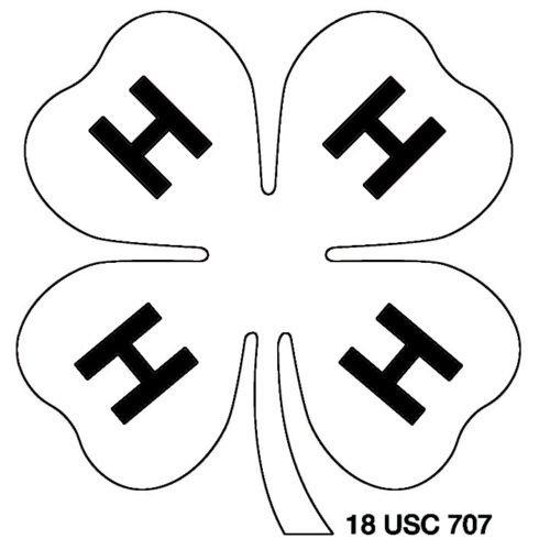 Color 4H Logo