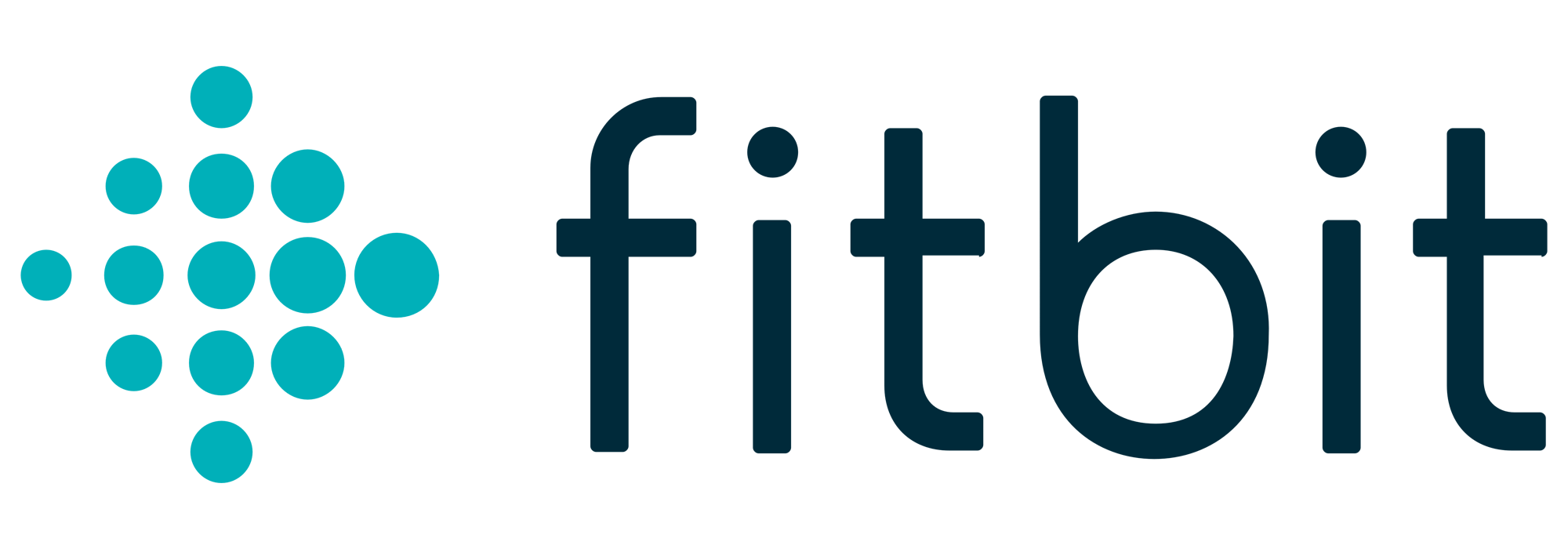How To Connect Fitbit To Iphone Health App