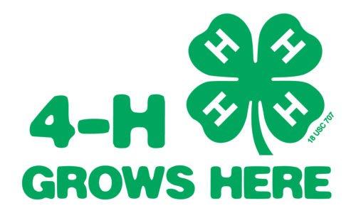 Font 4H Logo