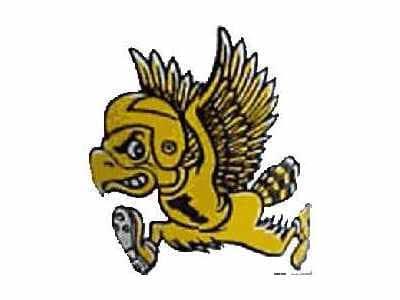 Iowa Hawkeyes Logo 1962