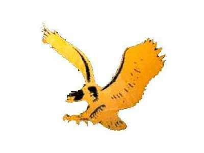 Iowa Hawkeyes Logo 1971