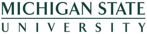 Font Michigan State logo