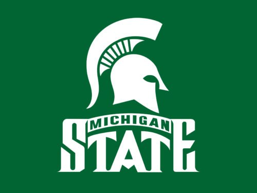 color Michigan State logo
