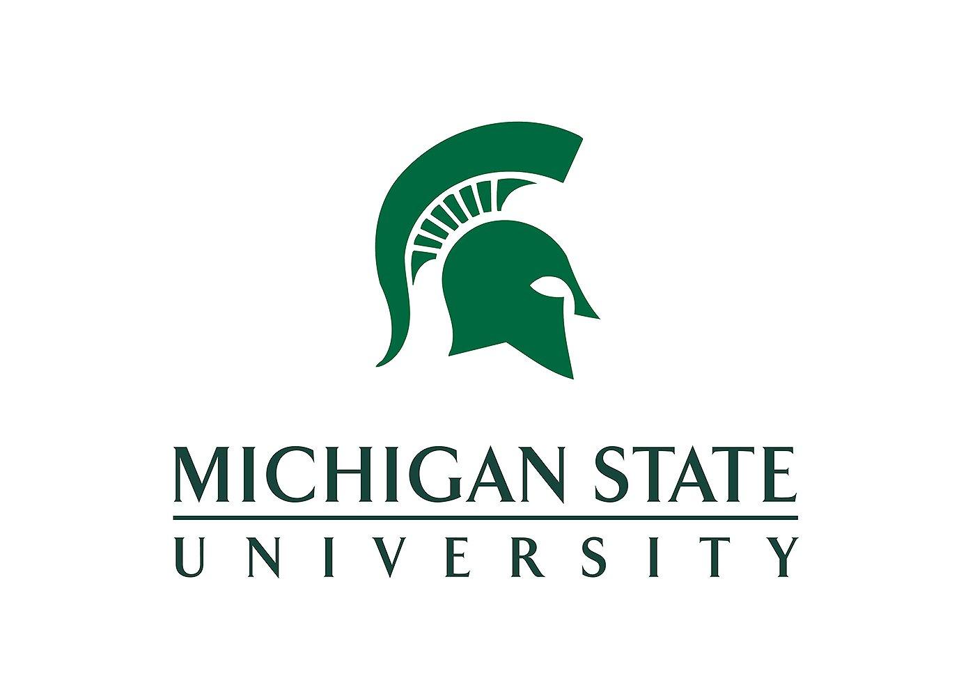 Michigan Logo, Michigan Symbol, Meaning, History and Evolution
