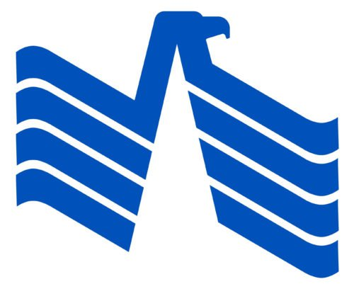 Color USAA Logo
