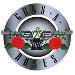 Guns N' Roses logo vector