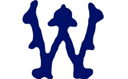 Minnesota Twins Logo 1903