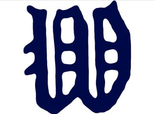 Minnesota Twins Logo 1906