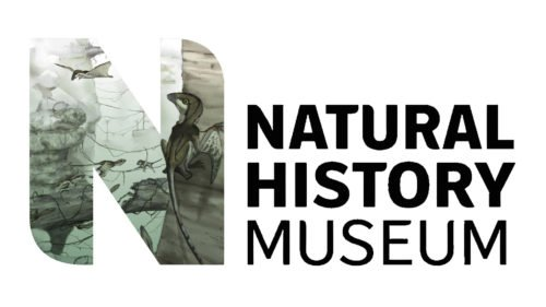 Color Natural History Museum Logo