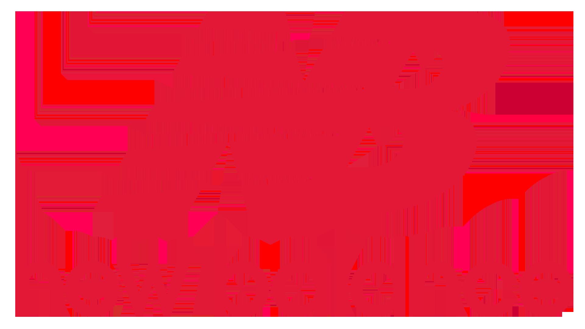 new balance logo vegas ballers