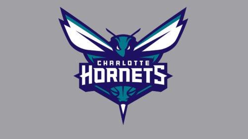 Charlotte Hornets Logo Color