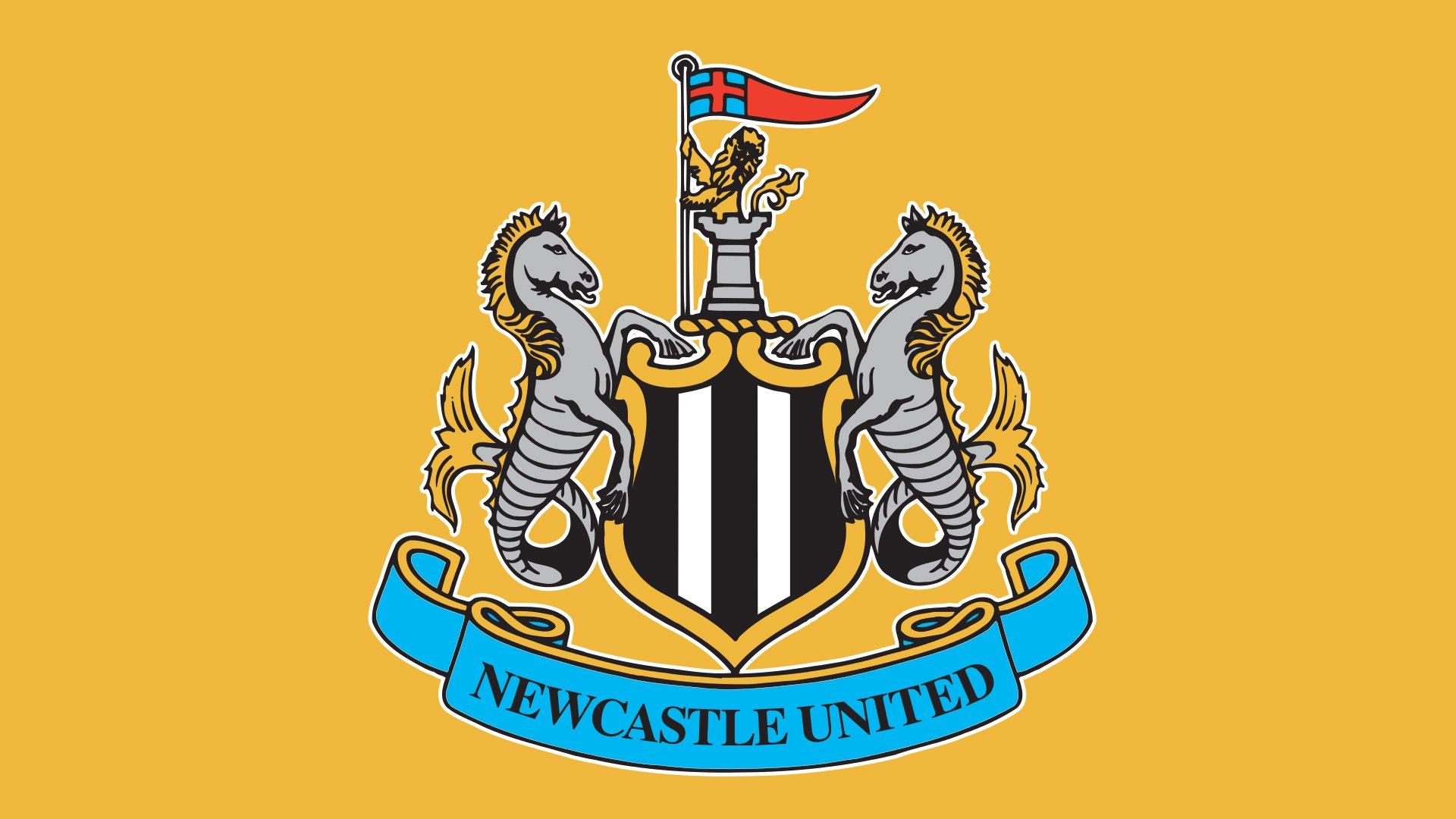 Newcastle United F.C 3D Sticker Small