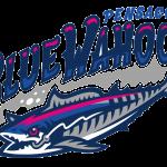 Pensacola Blue Wahoos Logo