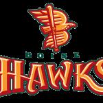 Boise Hawks Logo