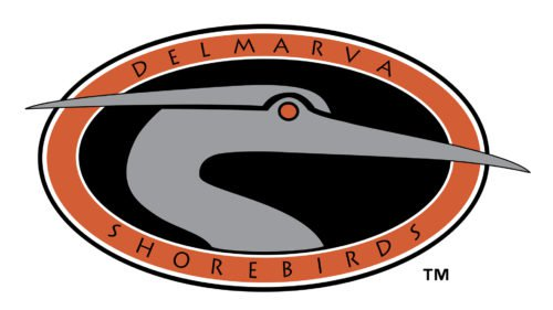 Delmarva Shorebirds Logo old