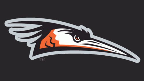 Delmarva Shorebirds emblem