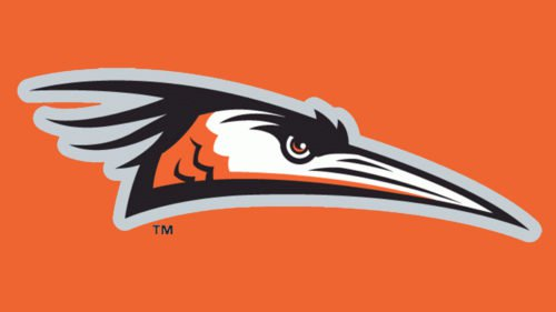 Delmarva Shorebirds symbol