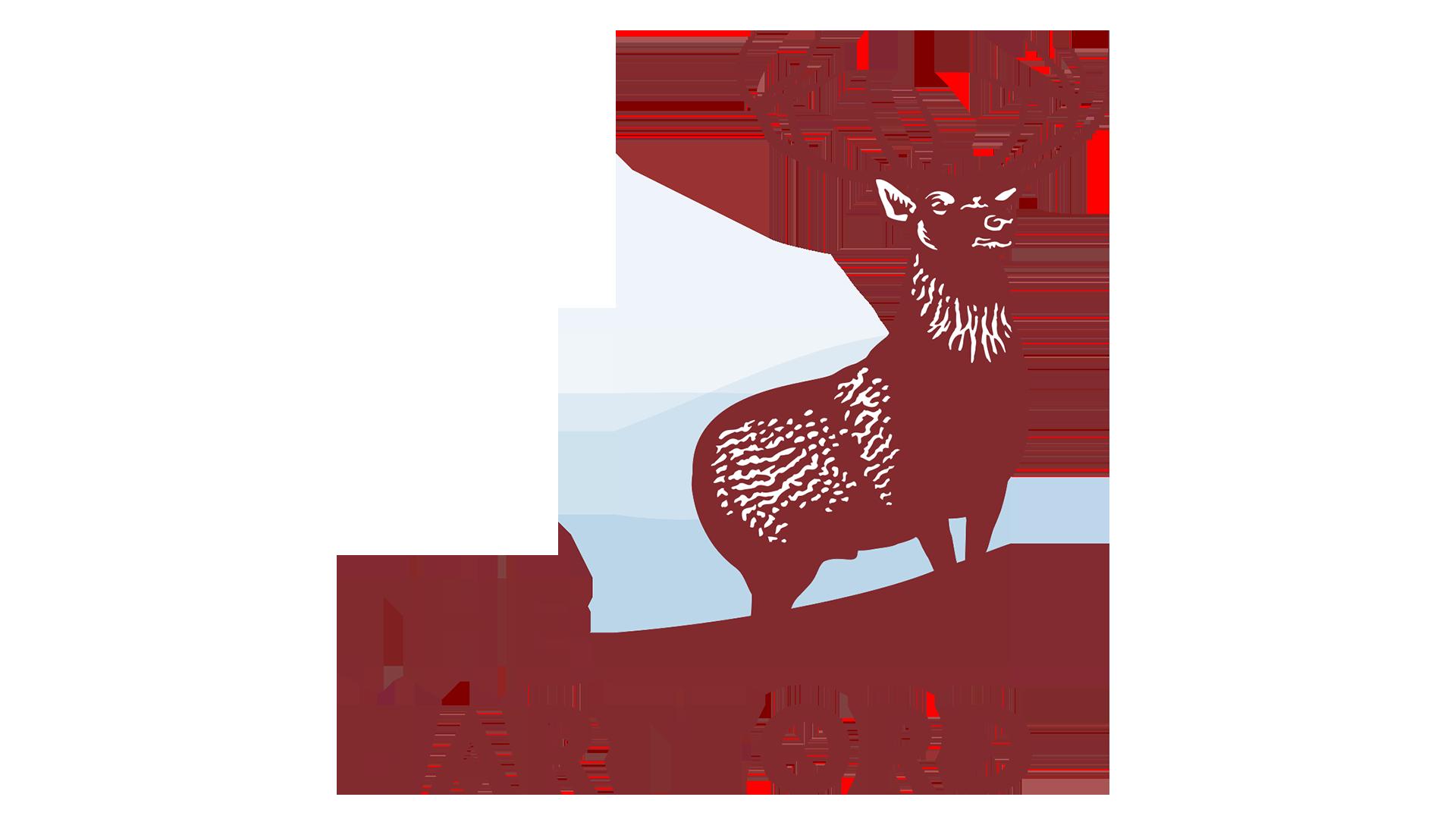 Hartford Insurance Logo Symbol Meaning History And