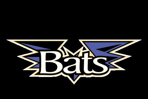 Louisville Bats Logo 2002