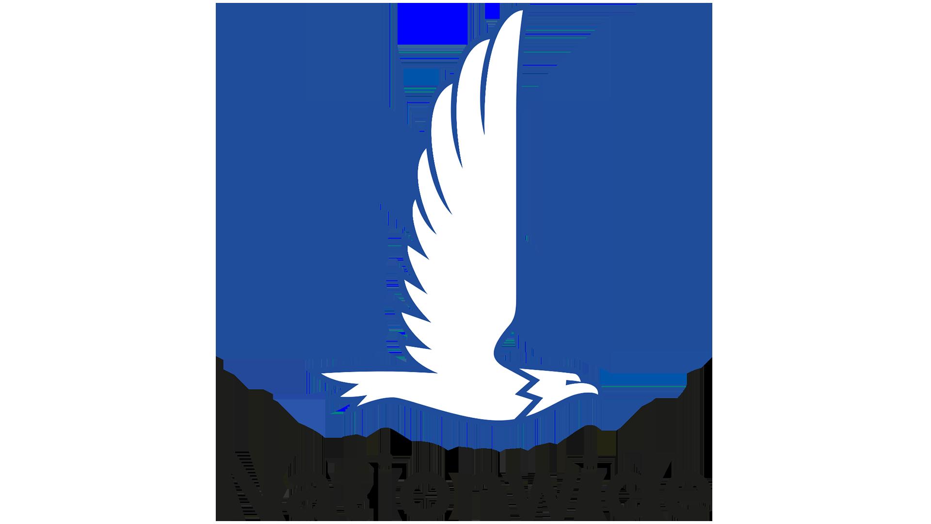 Image result for nationwide logo