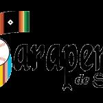 Saltillo Saraperos Logo