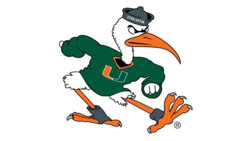 miami hurricanes bird logo
