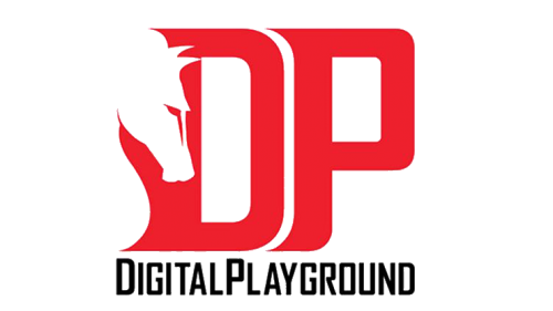DigitalPlayground Logo