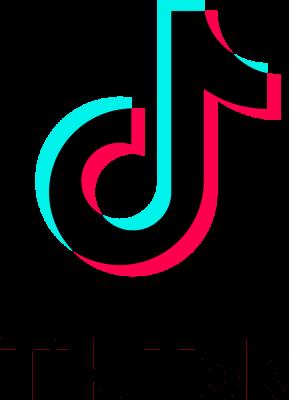Tiktok Logo 2017