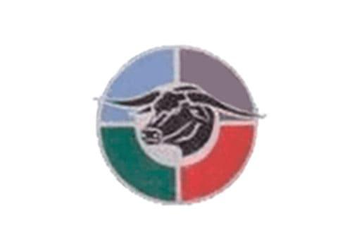 Bulls-rugby Logo 1997