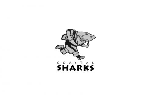 Sharks Logo 1995
