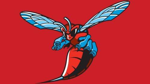 Delaware State Hornets football logo
