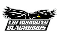 LIU-Brooklyn Blackbirds Logo