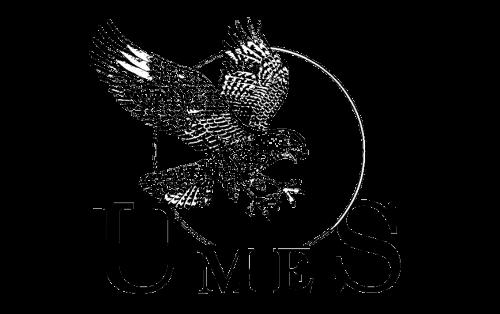 Maryland-Eastern Shore Hawks Logo-1991