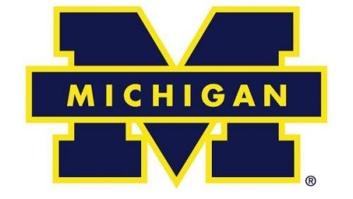 Michigan Wolverines Logo 1988