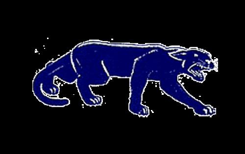 Pittsburgh Panthers Logo-1947