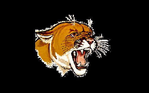 Pittsburgh Panthers Logo-1966