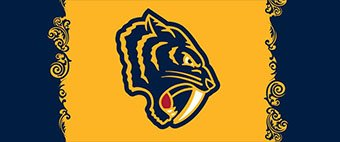 Predators Reveal Their New Secondary Logo for Coming Winter Classic