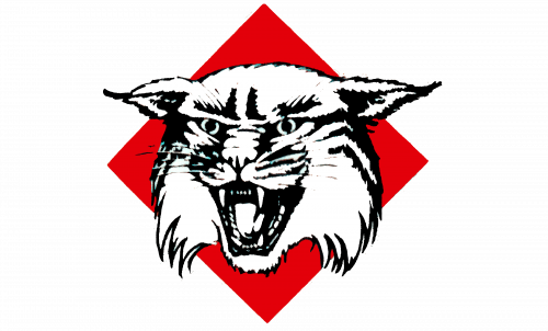 Davidson Wildcats Logo-1985