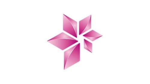Emblem Statoil