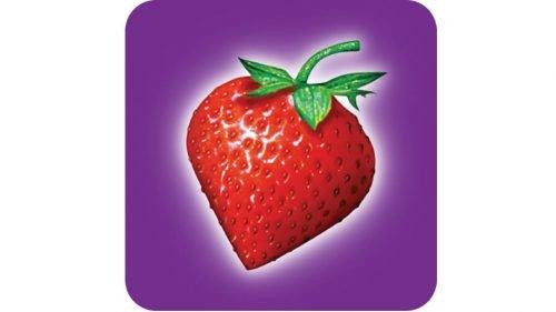 Strawberrynet Logo1